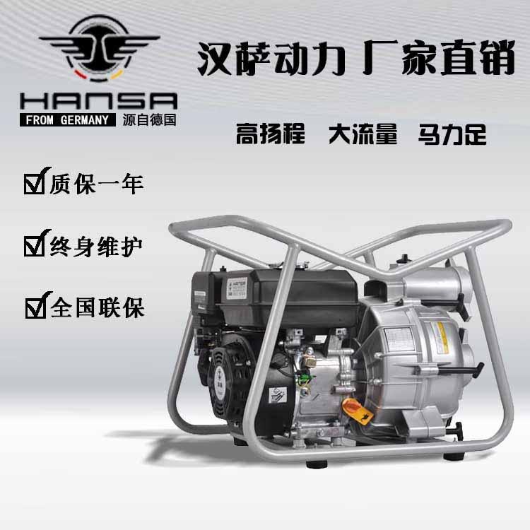西藏林芝双虎商贸有限公司 采购汉萨发电机、水泵各数十台